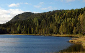 Icktjärnsbergets naturreservat